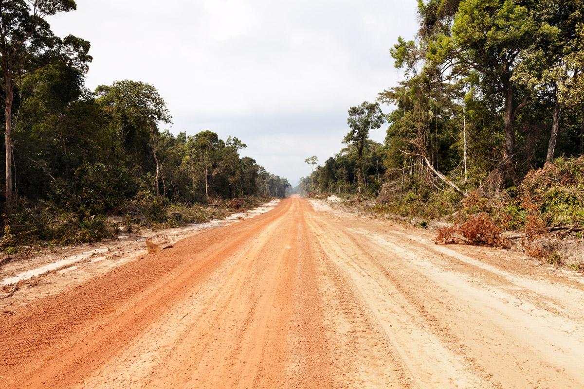reportage, cambogia, storytelling, sviluppo, futuro, disboscamento abusivo