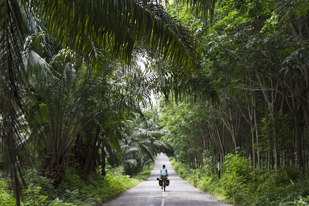 for a piece of cake, bike touring, bicicletta, diabete, tipo 1, reportage, storytelling, thailand